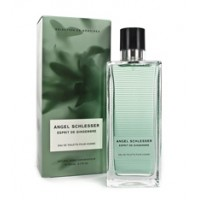 Angel Schlesser Gingembre Homme Edt 150 ml